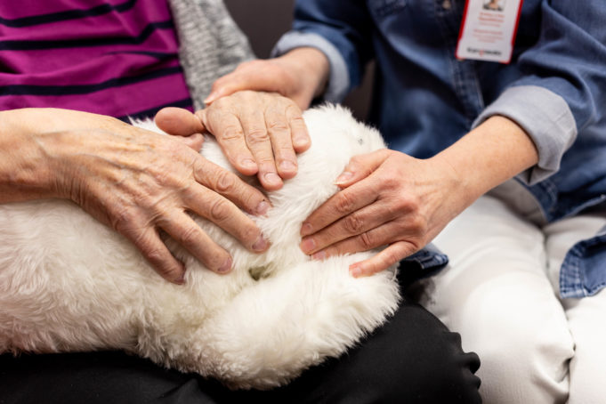 Kuvassa vanhuksen ja hoitajan kädet