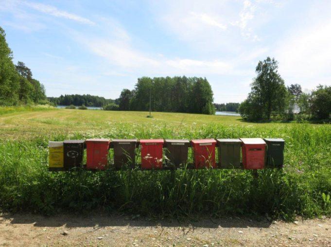 Postilaatikoita tien varressa, niityn reunassa. Taustalla näkyy järvi.