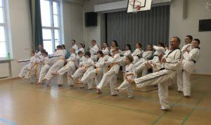 Kuva: Länkyn Taekwondo